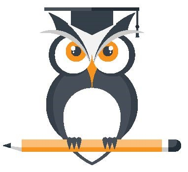 Wise Owl Icon
